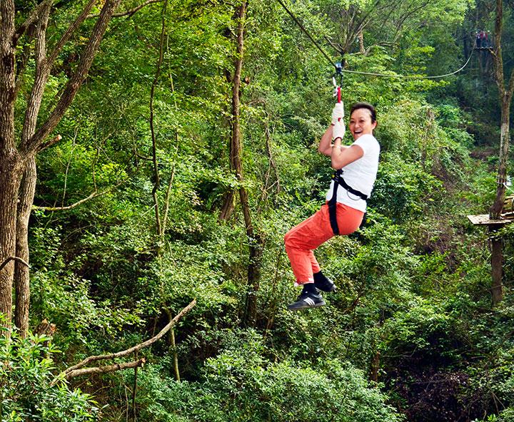 国外森林运动项目