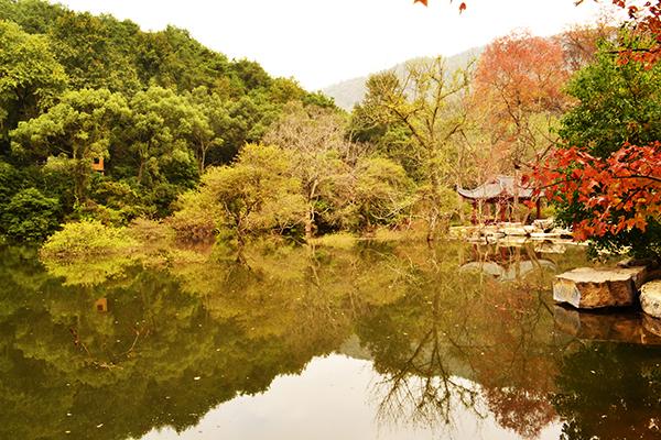 桂林漓江逍遥湖景区之秋色迷人